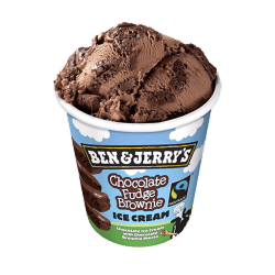 BEN&JERRY´S 500 ML. CHOC.